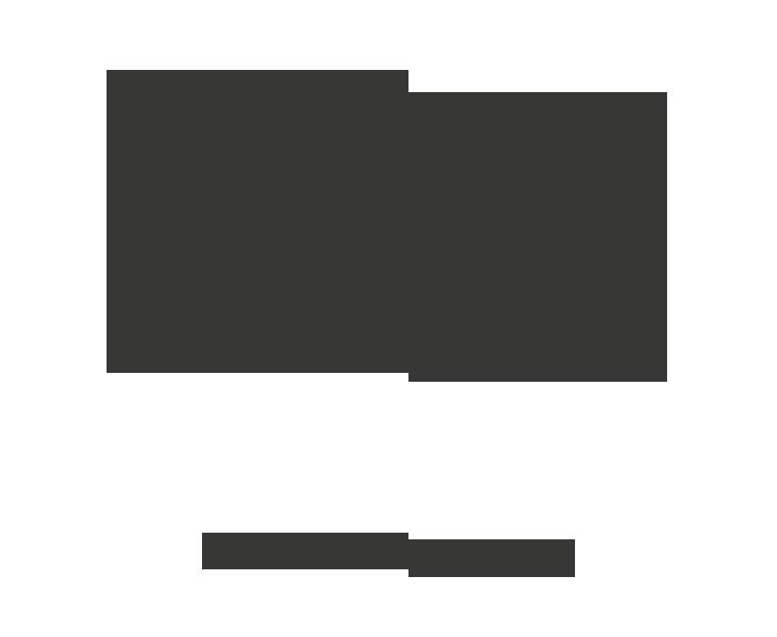 Bella Unión